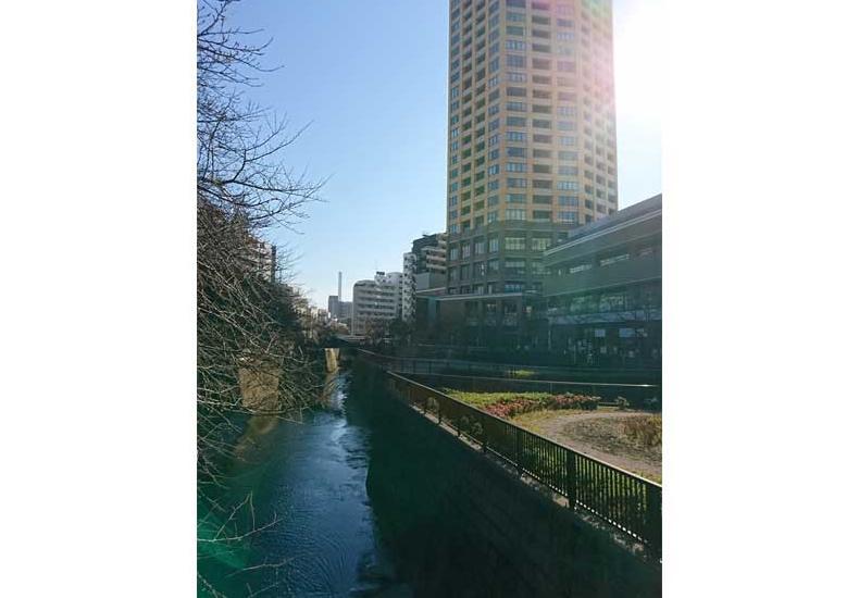 中目黒アトラスタワー 目黒川と外観 イメージ