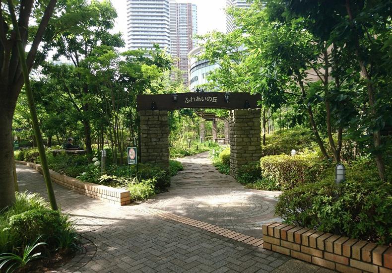 パークシティ武蔵小杉ミッドスカイタワー ふれあいの丘 イメージ