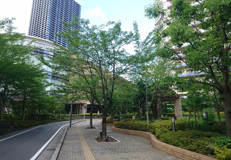 パークシティ武蔵小杉ミッドスカイタワー 側道 イメージ