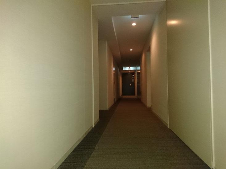 パークシティ武蔵小杉ステーションフォレストタワー 内廊下 イメージ