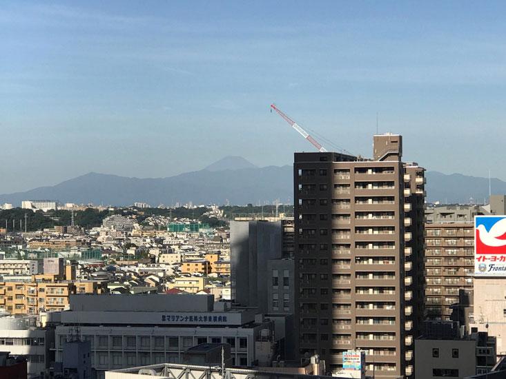 パークシティ武蔵小杉ステーションフォレストタワー 眺望写真 イメージ