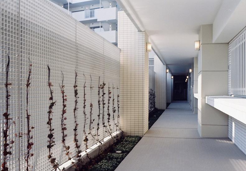 クレッセント東京リプライム 1階廊下 イメージ