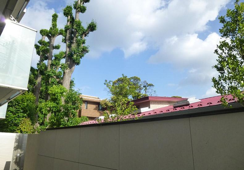ディアナコート代沢翠景 物件南側 イメージ