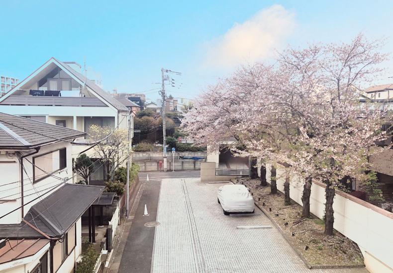 ディアナコート八雲桜樹 眺望 イメージ