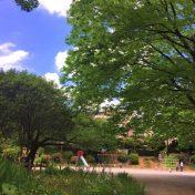 アールブラン新百合ヶ丘百合丘第2公園サムネイル